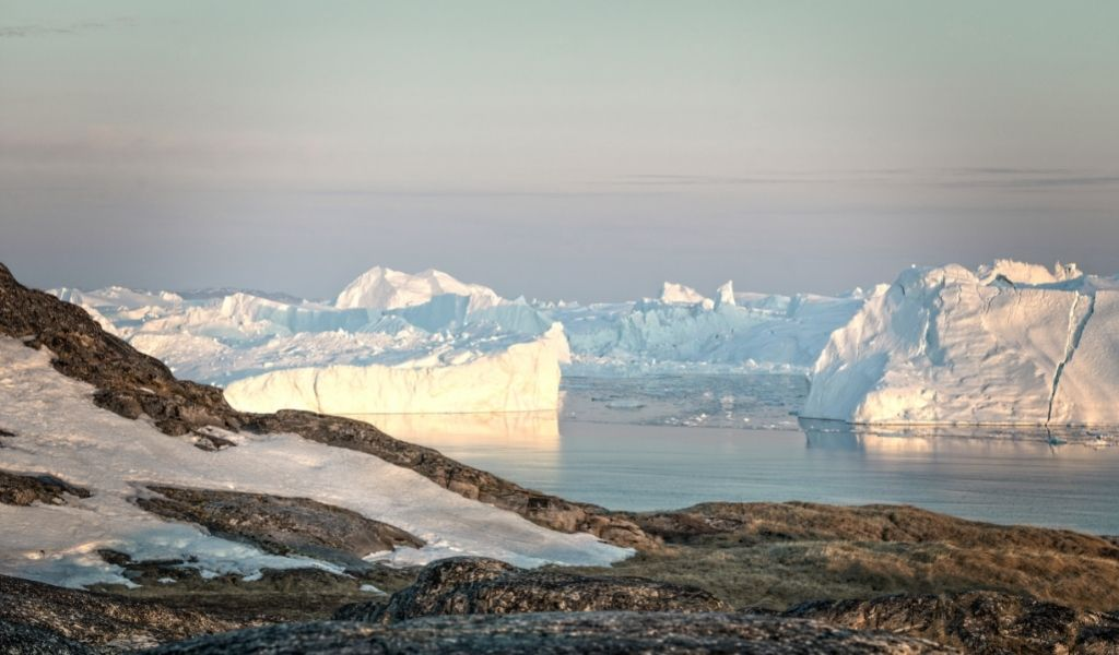 Is the Arctic a Desert or Tundra? [Both – Here's Why]